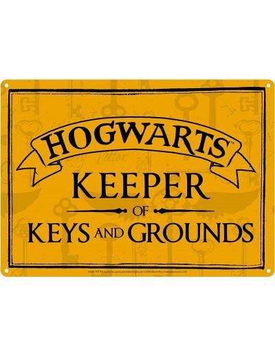 Harry Potter - Placa...