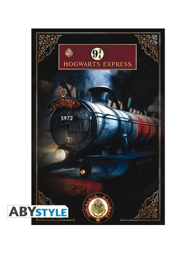 Harry Potter Póster...