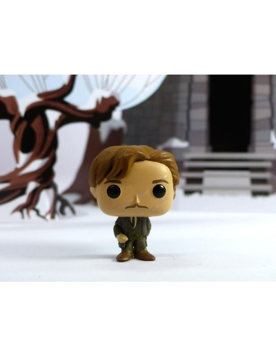 Harry Potter Remus Lupin Mini