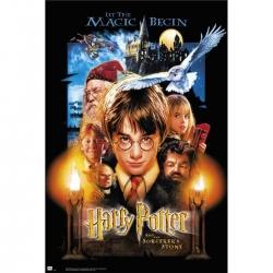 Harry Potter - Póster Harry...