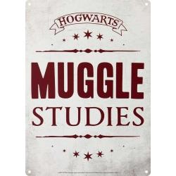 Harry Potter Placa Metálica...