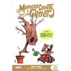 Mapache Cohete y Groot...