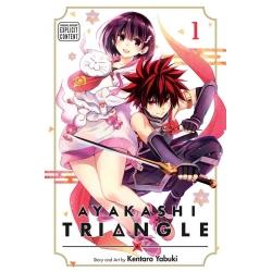Ayakashi Triangle 01