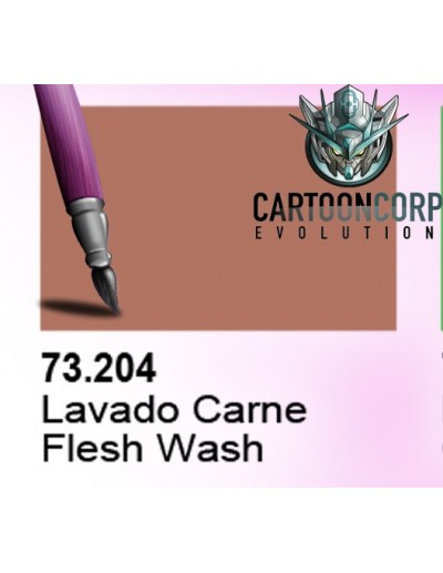 73204 - LAVADO CARNE