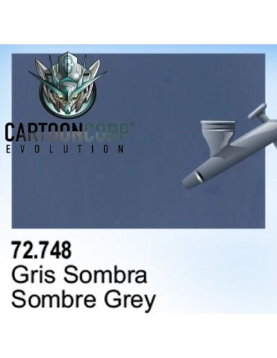 72748- GRIS SOMBRA
